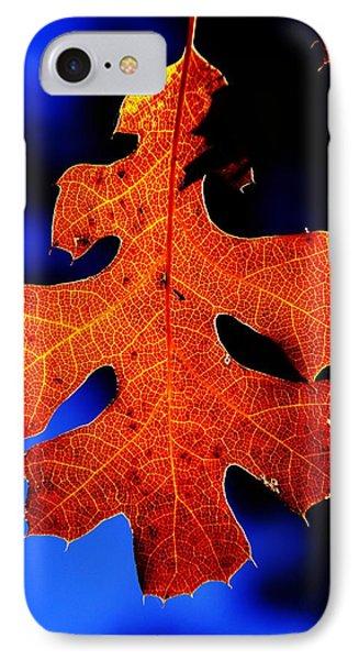 Fall Leaf Closeup IPhone Case