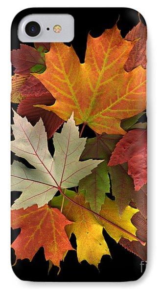 Fall Leaf Collage II IPhone Case by Dale Hoopingarner