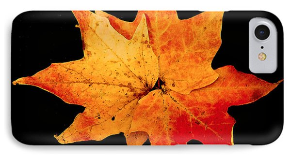IPhone Case featuring the photograph Fall Leaf Trio by Dee Dee  Whittle