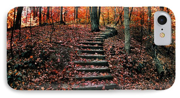 Fall Leaves At Wildcat Den IPhone Case