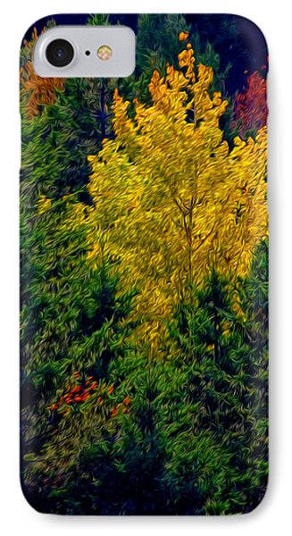 IPhone Case featuring the photograph Fall Leaves by Bill Howard
