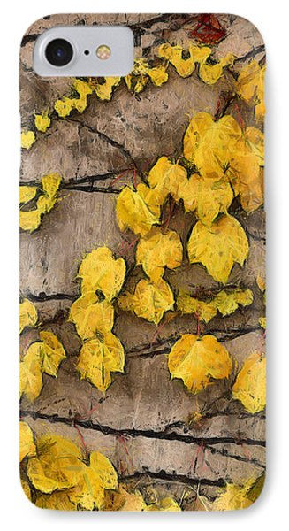 IPhone Case featuring the photograph Fall Leaves II by Brian Davis