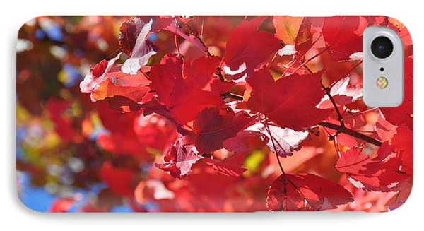 IPhone Case featuring the photograph Fall Leaves In Oregon by Mindy Bench