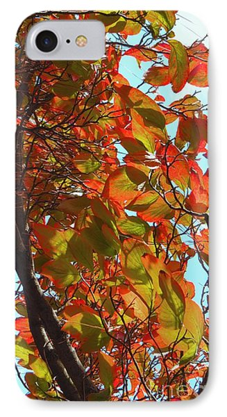 Fall Leaves Phone Case by Scott Cameron