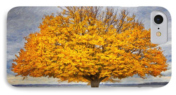 Fall Linden IPhone Case by Verena Matthew