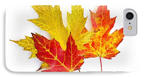 Fall Maple Leaves On White Phone Case by Elena Elisseeva