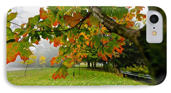 Fall Maple Tree In Foggy Park Phone Case by Elena Elisseeva