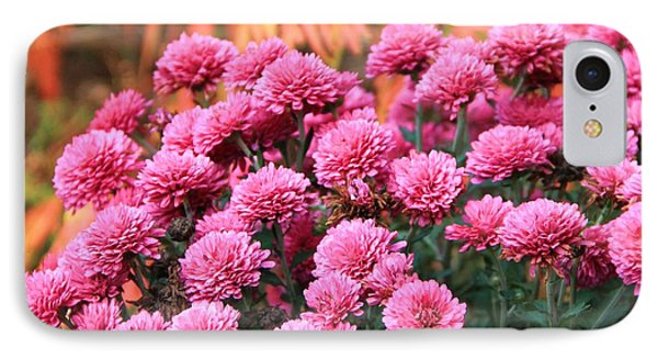 Fall Mums IPhone Case by Dan Sproul