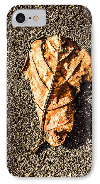 Fall Of Seasons IPhone Case by Jorgo Photography - Wall Art Gallery