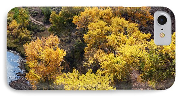 IPhone Case featuring the photograph Fall On The Chama River by Roselynne Broussard