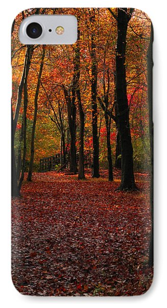 IPhone Case featuring the photograph Fall Path by Raymond Salani III