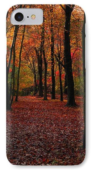 Fall Path Phone Case by Raymond Salani III