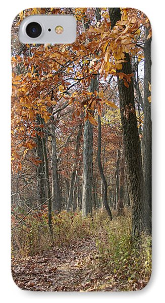 Fall Pathway Overhang IPhone Case