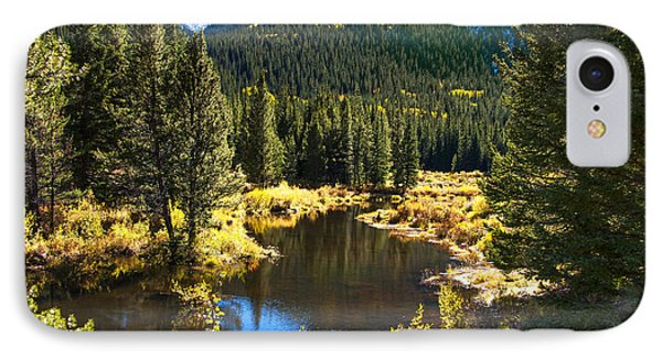 Fall Pond Cottonwood Pass IPhone Case by The Forests Edge Photography - Diane Sandoval