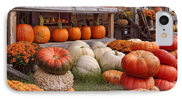 Fall Pumpkins And Gourds IPhone Case by Greg Jackson