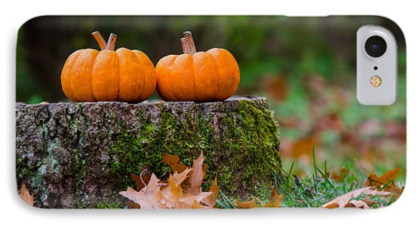 Fall Pumpkins IPhone Case by Mike Ste Marie