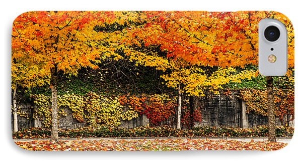 IPhone Case featuring the photograph Fall Rainbow by Crystal Hoeveler