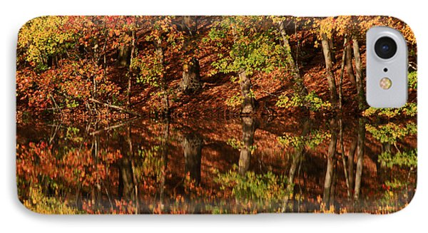 Fall Reflections Phone Case by Karol Livote