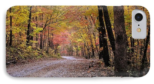 Fall Road Phone Case by Marty Koch