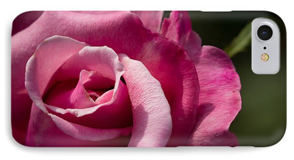 IPhone Case featuring the photograph Fall Rose by Cathy Donohoue