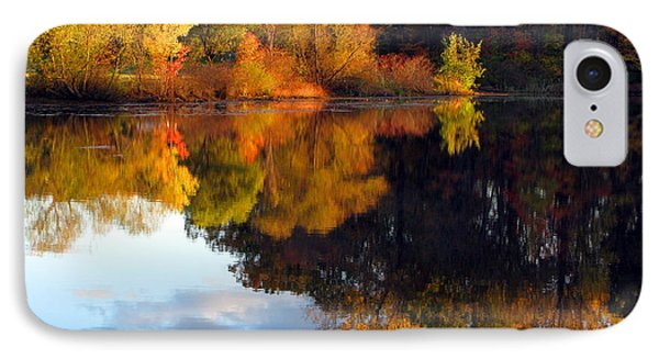 Fall Scene Phone Case by Olivier Le Queinec