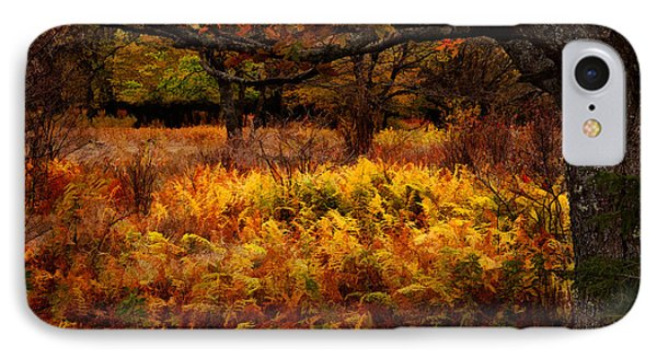 Fall Shadows - Dolly Sods West Virginia IPhone Case