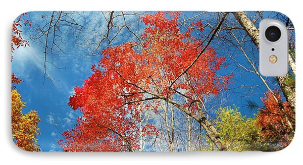 Fall Sky IPhone Case by Patrick Shupert