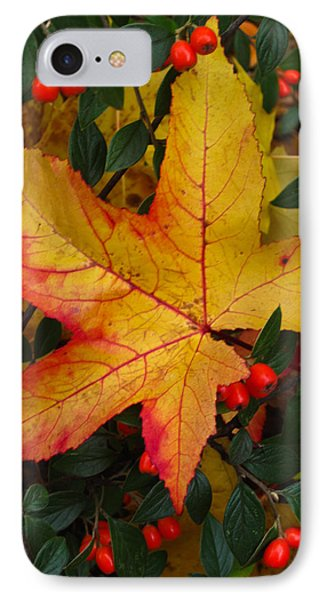 IPhone Case featuring the photograph Fall Splendor by Cheryl Perin