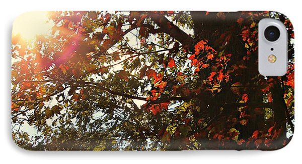 IPhone Case featuring the photograph Fall Sun by Candice Trimble