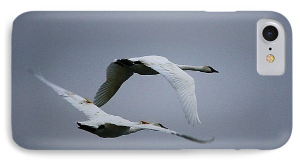 Fall Swans IPhone Case by Al Fritz