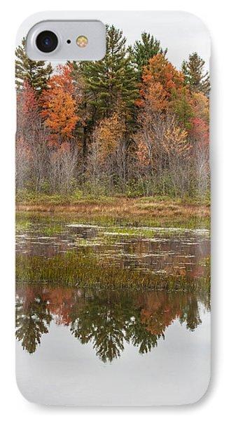 Fall Trees Reflected In Lake Chocorua Phone Case by Karen Stephenson