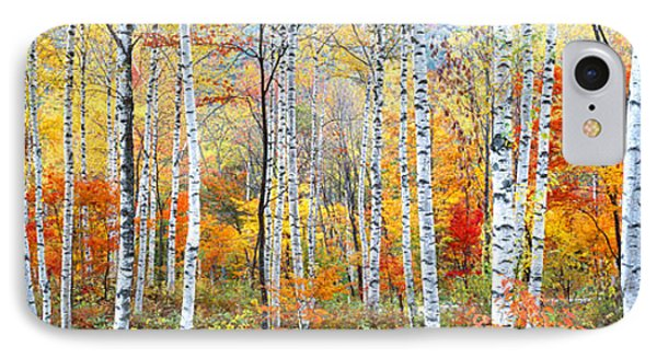 Fall Trees, Shinhodaka, Gifu, Japan IPhone Case by Panoramic Images