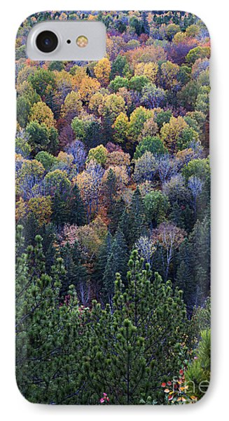Fall Treetops At Lookout IPhone Case