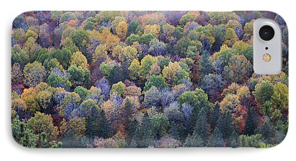 Fall Treetops IPhone Case