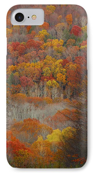 Fall Tunnel IPhone Case
