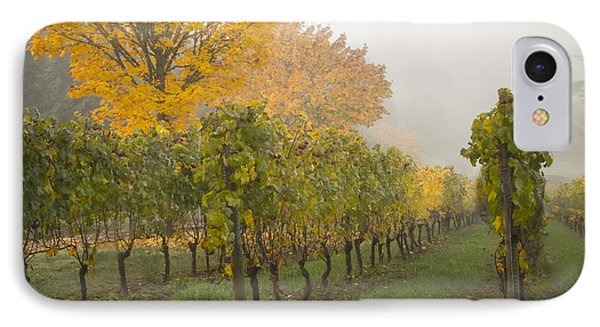 Fall Vineyard Colors Phone Case by Jean Noren