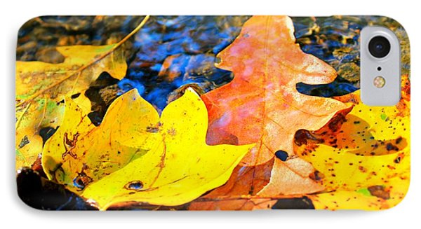 IPhone Case featuring the photograph Fallen Beauty by Candice Trimble