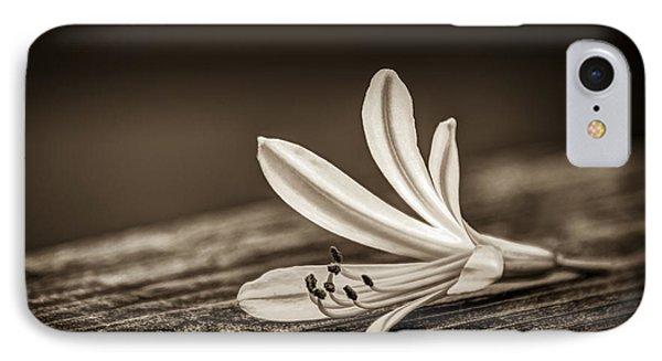 Fallen Beauty- Sepia IPhone Case by Marvin Spates