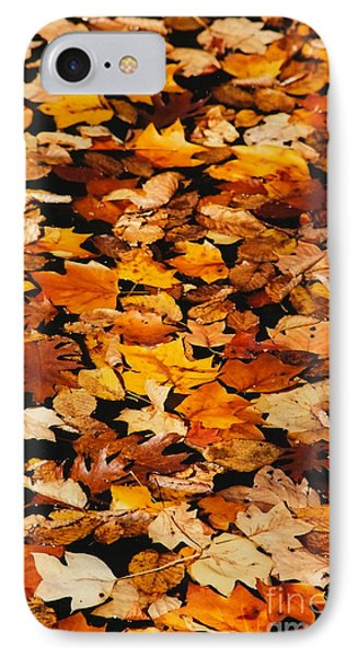 IPhone Case featuring the photograph Fallen by Jesse Ciazza