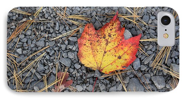 IPhone Case featuring the photograph Fallen Leaf by Dora Sofia Caputo Photographic Art and Design