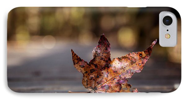 IPhone Case featuring the photograph Fallen Leaf by Serge Skiba
