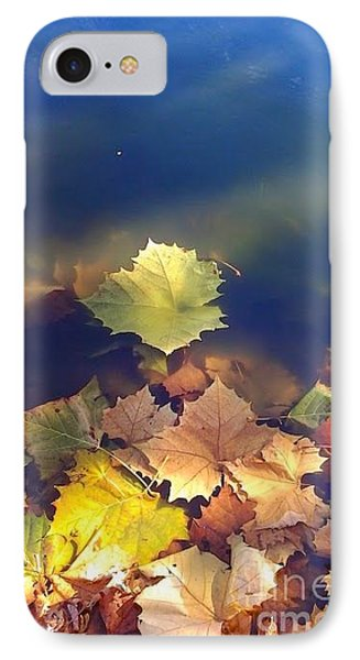Fallen Leaf IPhone Case by Susan Townsend
