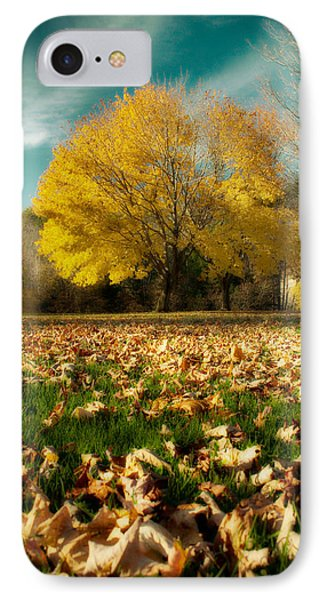 Fallen Leaves IPhone Case by Cindy Haggerty