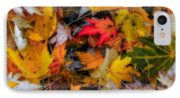IPhone Case featuring the photograph Fallen Leaves by Dennis Bucklin