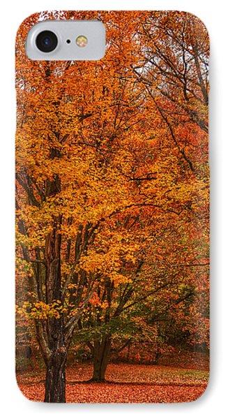 Fallen Leaves II IPhone Case