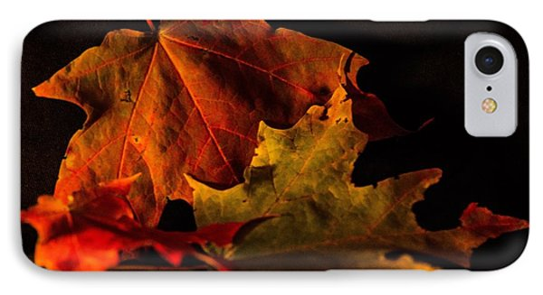 Fallen Leaves IPhone Case by Judy Wolinsky