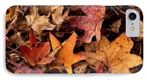 Fallen Leaves IPhone Case by Rebecca Davis