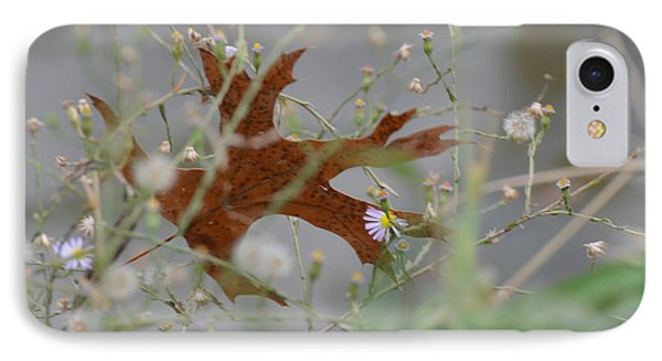IPhone Case featuring the photograph Fallen Oak Leaf Caught In Weeds by Debby Pueschel