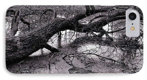 Fallen Tree IPhone Case by Dariusz Gudowicz