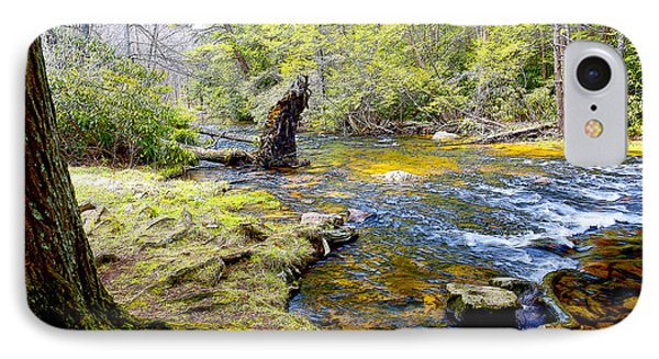 Fallen Tree In Stream Pocono Mountains IPhone Case
